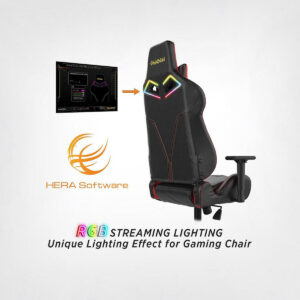 Gamdias Achilles P1 L RGB Gaming Chair